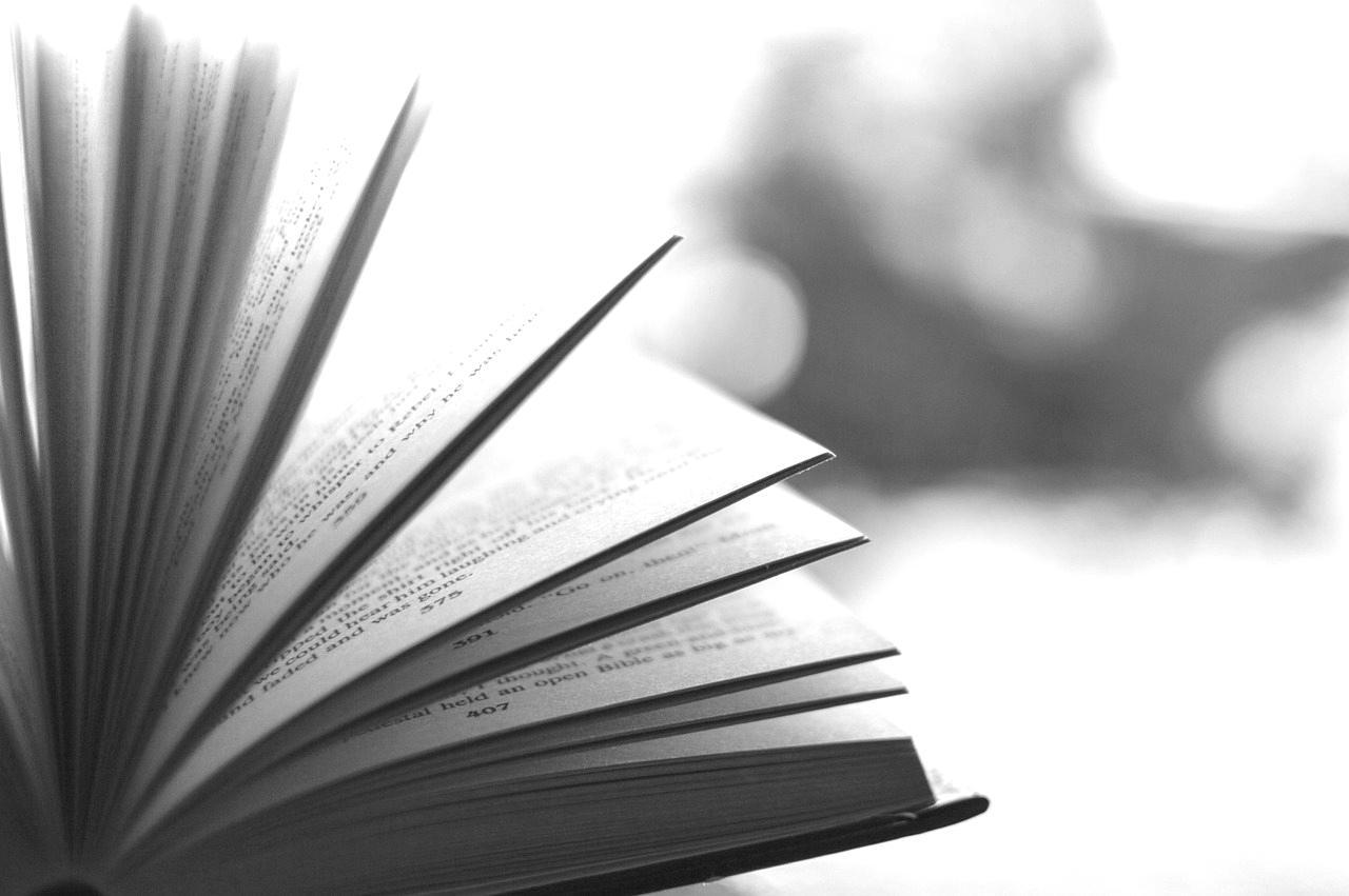 Buch zum Lesen