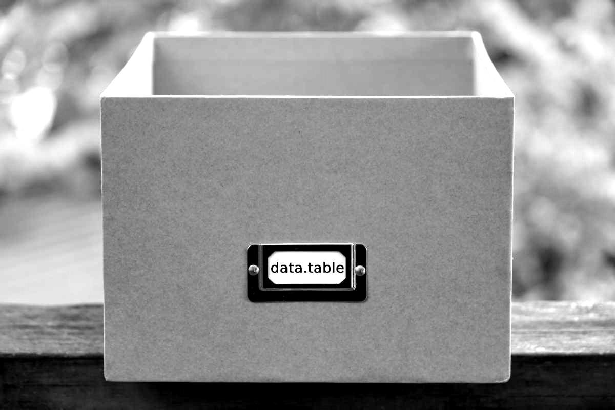 Das data.table Package