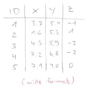 Wide Format in R